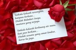 Gambar Kata Kata Romantis Untuk Menyatakan Cinta Selamanya
